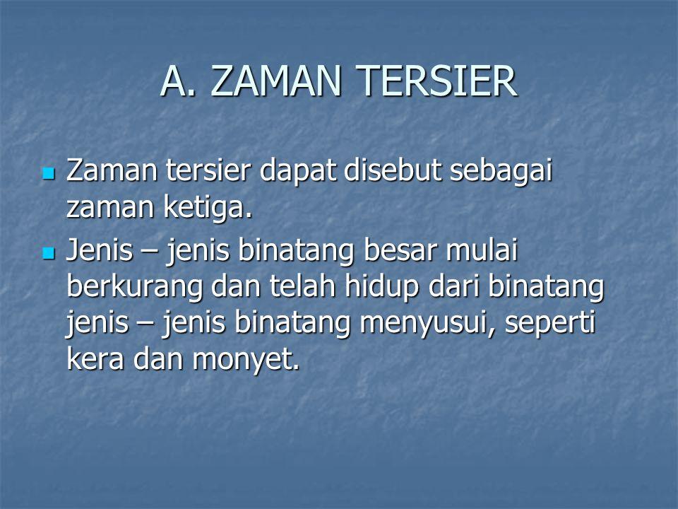 A.ZAMAN TERSIER Zaman tersier dapat disebut sebagai zaman ketiga.