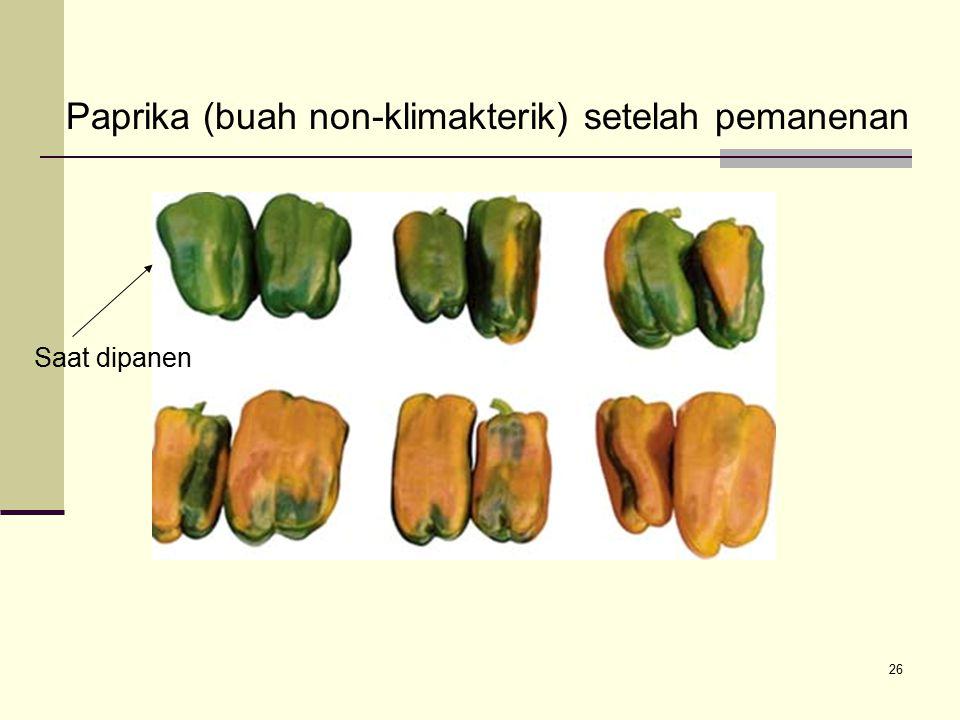 26 Paprika (buah non-klimakterik) setelah pemanenan Saat dipanen