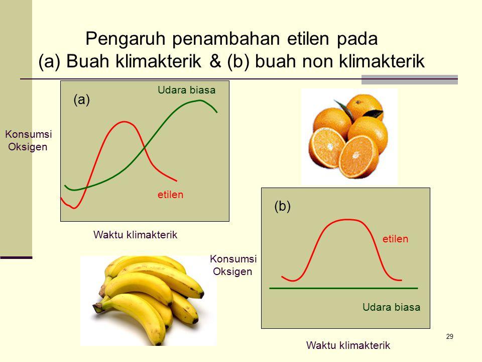 29 Udara biasa etilen Waktu klimakterik Konsumsi Oksigen Pengaruh penambahan etilen pada (a) Buah klimakterik & (b) buah non klimakterik (a) (b) Konsu