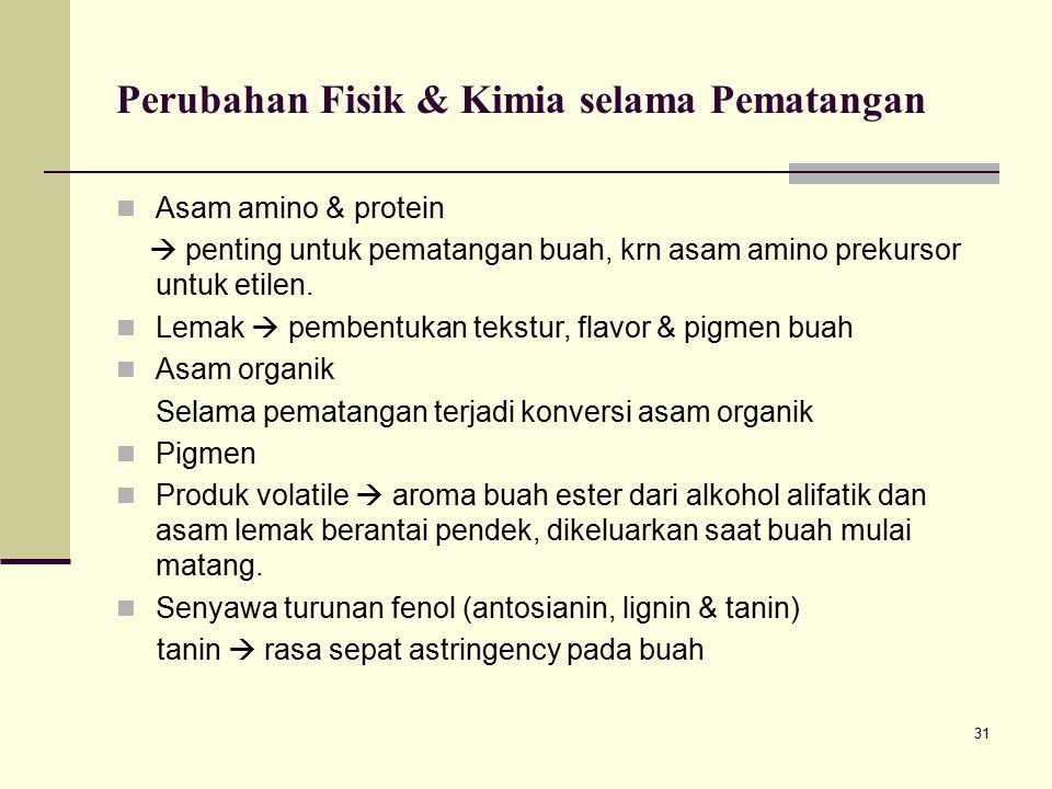 31 Asam amino & protein  penting untuk pematangan buah, krn asam amino prekursor untuk etilen. Lemak  pembentukan tekstur, flavor & pigmen buah Asam