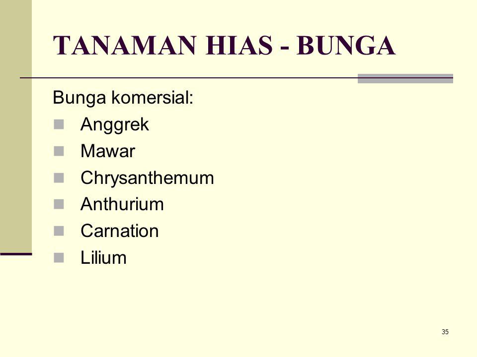35 TANAMAN HIAS - BUNGA Bunga komersial: Anggrek Mawar Chrysanthemum Anthurium Carnation Lilium