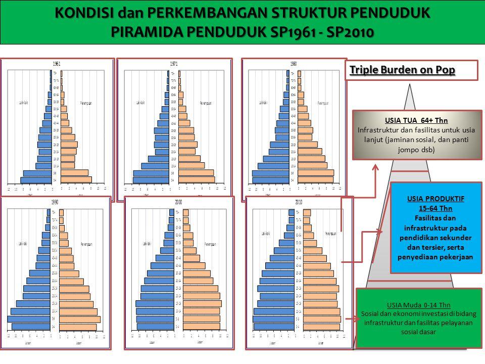 KONDISI dan PERKEMBANGAN STRUKTUR PENDUDUK PIRAMIDA PENDUDUK SP1961 - SP2010 USIA PRODUKTIF 15-64 Thn Fasilitas dan infrastruktur pada pendidikan seku