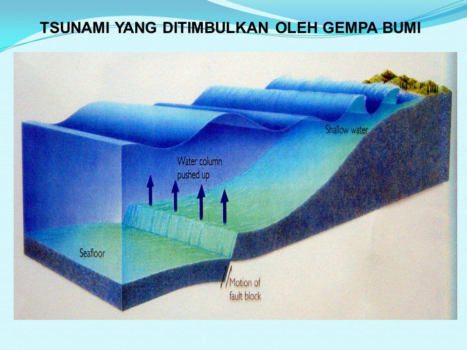 TSUNAMI YANG DITIMBULKAN OLEH GEMPA BUMI GEMPA BESAR (M>7.5) GEMPA DANGKAL – di atau dekat dasar laut (< 50 km) Daerah Subduksi Pergeseran tiba-tiba d