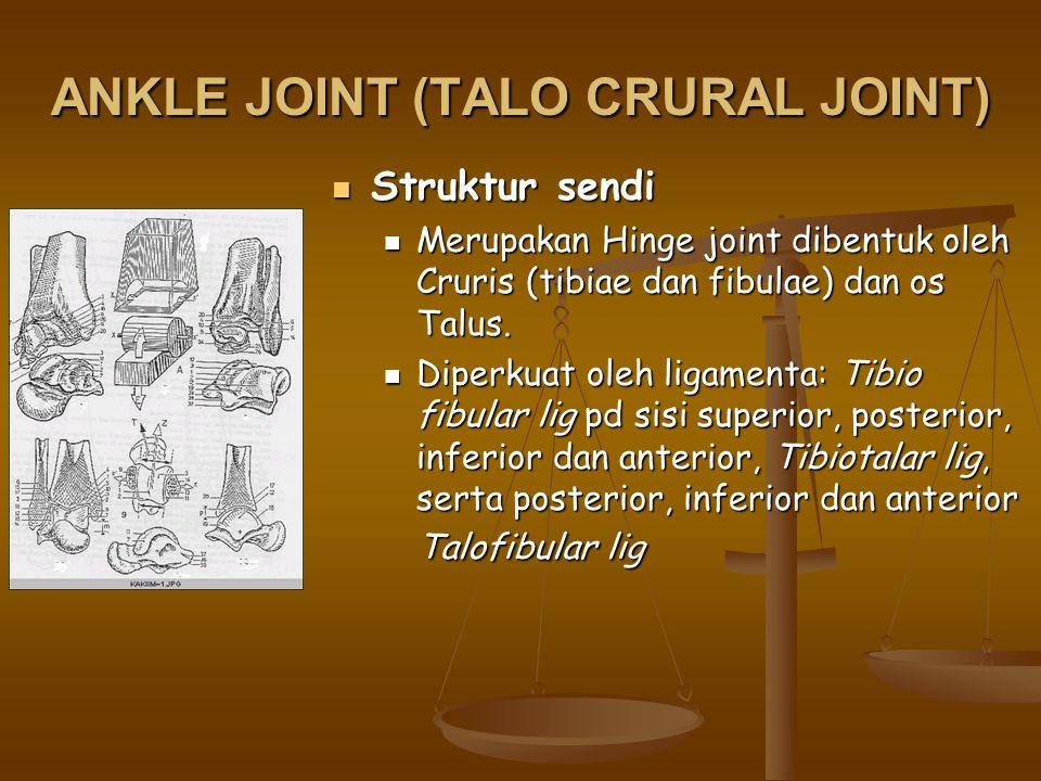 ANKLE JOINT (TALO CRURAL JOINT) Struktur sendi Struktur sendi Merupakan Hinge joint dibentuk oleh Cruris (tibiae dan fibulae) dan os Talus. Merupakan