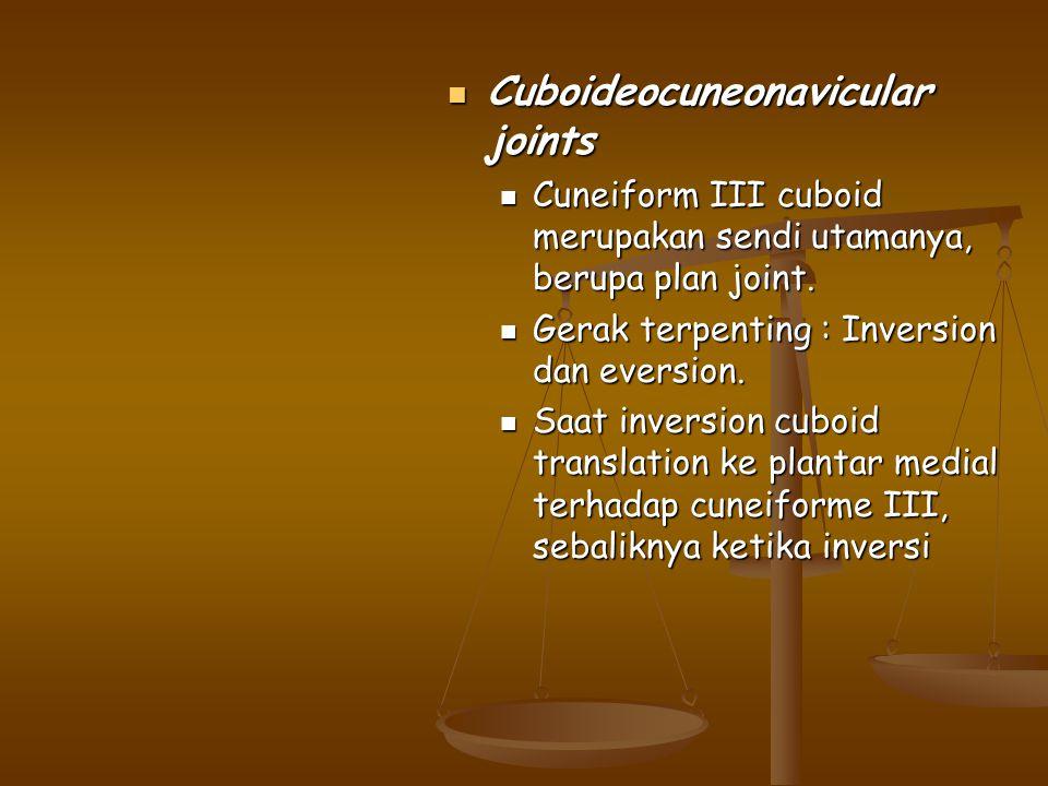 Cuboideocuneonavicular joints Cuboideocuneonavicular joints Cuneiform III cuboid merupakan sendi utamanya, berupa plan joint. Cuneiform III cuboid mer