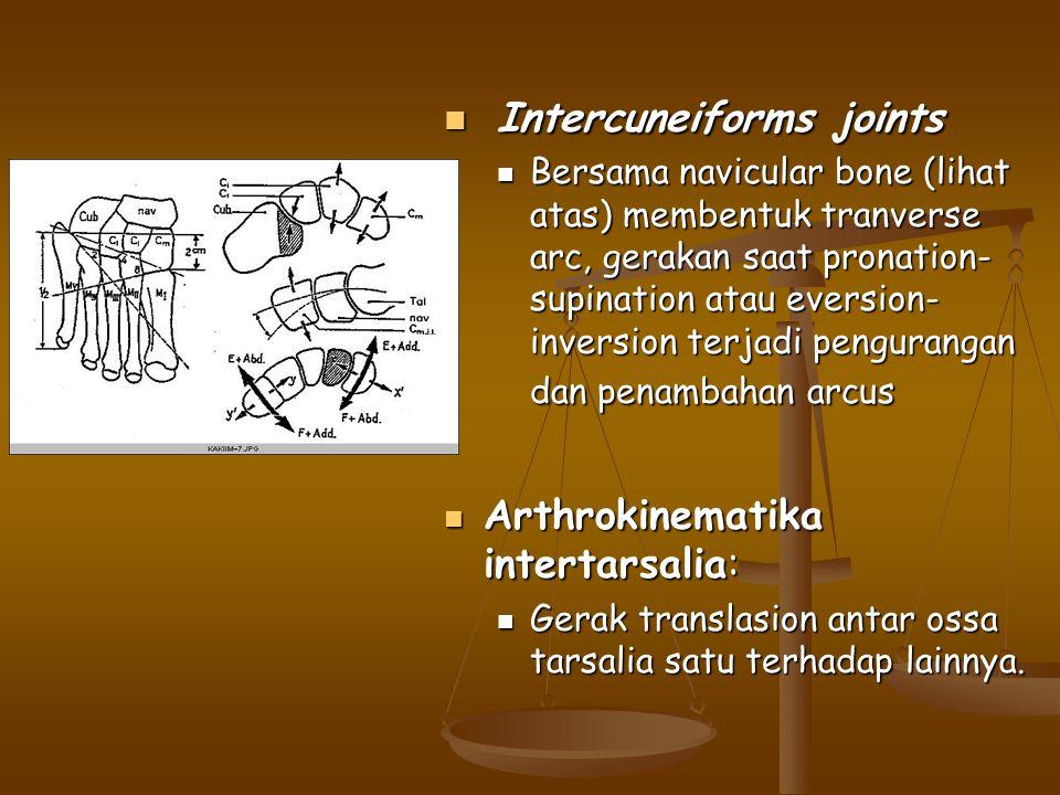 Intercuneiforms joints Intercuneiforms joints Bersama navicular bone (lihat atas) membentuk tranverse arc, gerakan saat pronation- supination atau eve