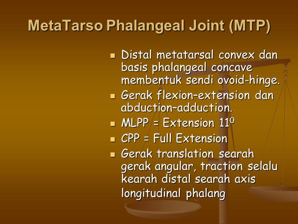 MetaTarso Phalangeal Joint (MTP) Distal metatarsal convex dan basis phalangeal concave membentuk sendi ovoid-hinge. Distal metatarsal convex dan basis