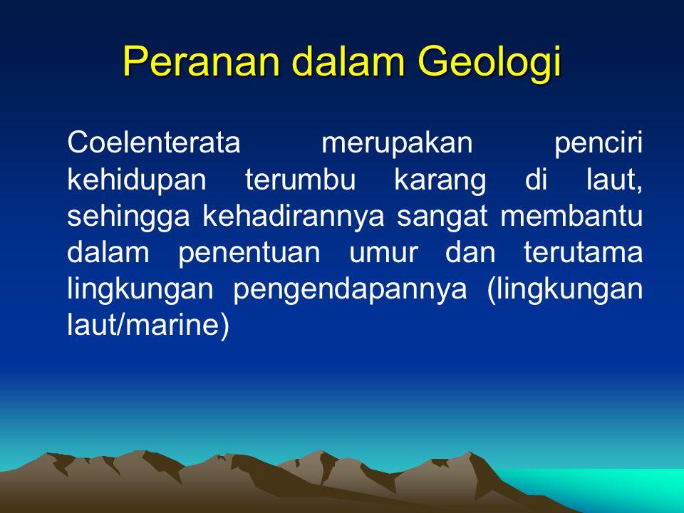 Peranan dalam Geologi Coelenterata merupakan penciri kehidupan terumbu karang di laut, sehingga kehadirannya sangat membantu dalam penentuan umur dan