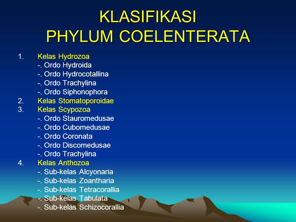 KLASIFIKASI PHYLUM COELENTERATA 1.Kelas Hydrozoa -.