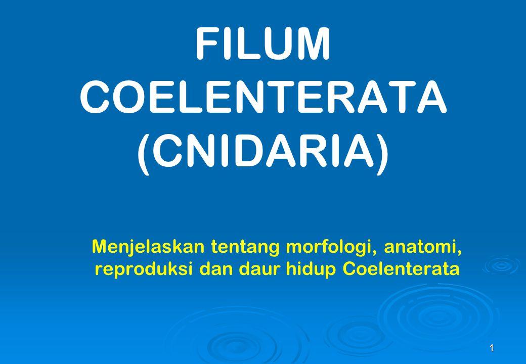 1 FILUM COELENTERATA (CNIDARIA) Menjelaskan tentang morfologi, anatomi, reproduksi dan daur hidup Coelenterata