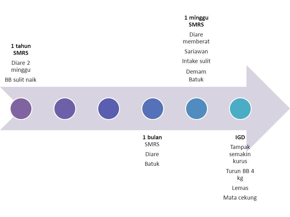 Pemeriksaan 15/3/14HasilRujukan Hematologi Hemoglobin11,810,7 – 14,7 Hematokrit3431-43 Leukosit12,25,0 – 14,5 Trombosit512181-521 Eritrosit4,73,8 – 5,8 VER/HER/KHER/RDW VER72,172,0 – 88,0 HER25,023,0 – 31,0 KHER34, 726,0 – 34,0 RDW15,511,5 – 14,5 Kimia Klinik SGOT410 – 34 SGPT270 – 40 Ureum Darah540 – 48 Kreatinin Darah1,50,0 – 0,9 GDS10860 – 100