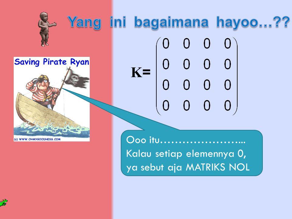 K=K= Ooo itu…………………... Kalau setiap elemennya 0, ya sebut aja MATRIKS NOL