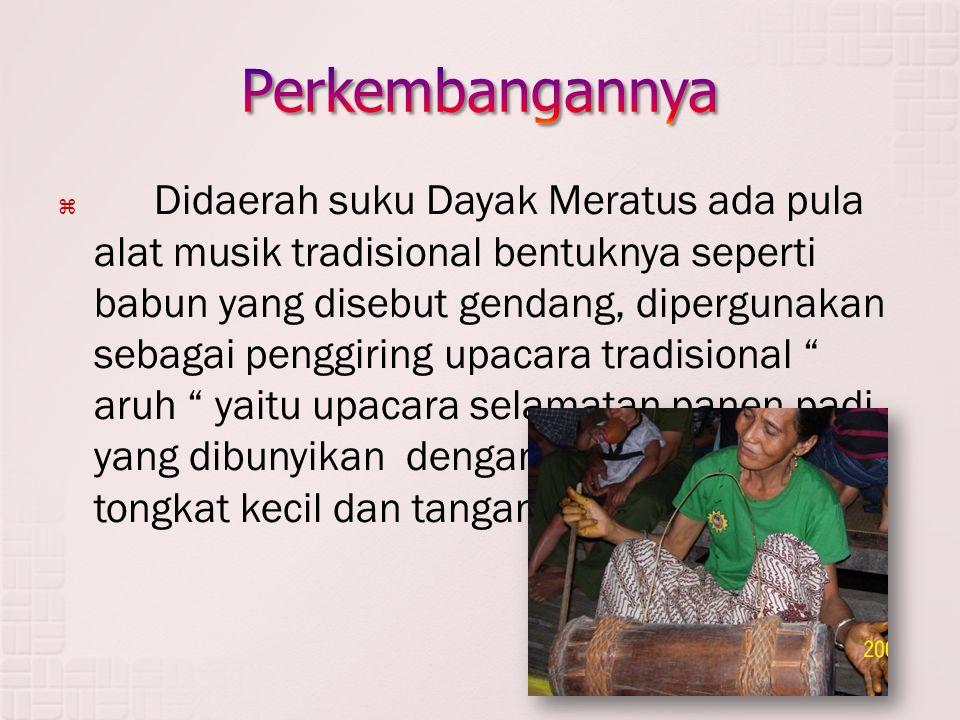 Didaerah suku Dayak Meratus ada pula alat musik tradisional bentuknya seperti babun yang disebut gendang, dipergunakan sebagai penggiring upacara tr