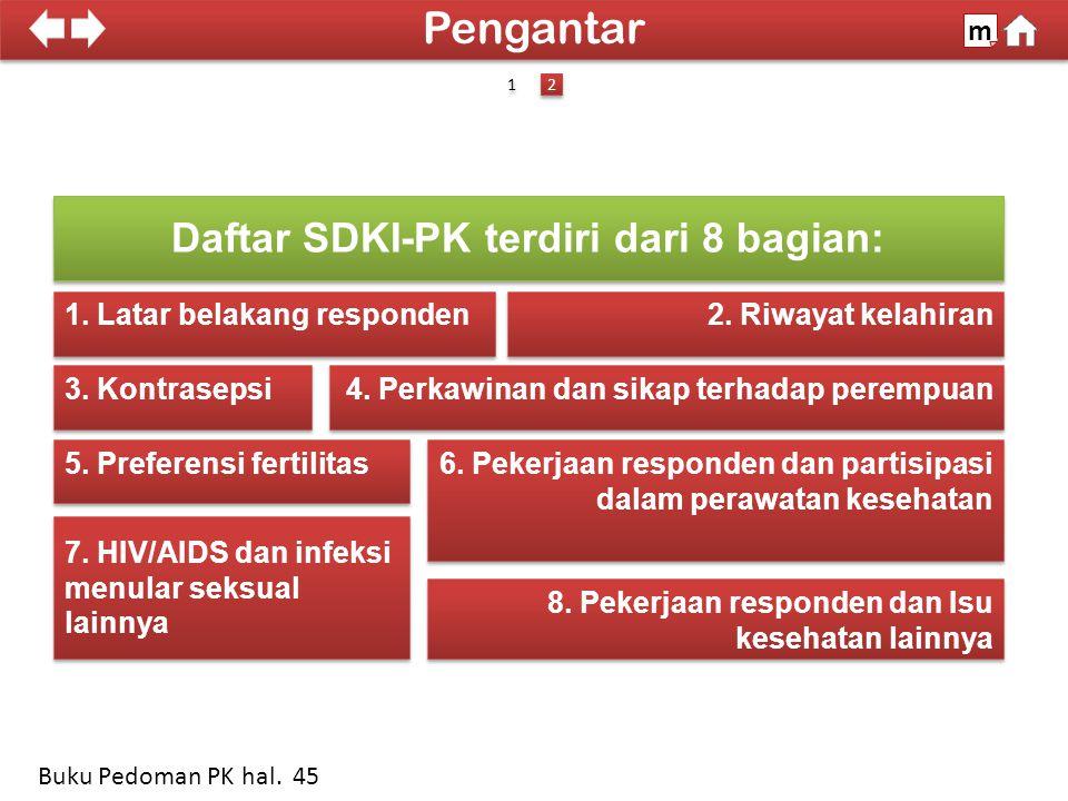100% SDKI 2012 Daftar SDKI-PK terdiri dari 8 bagian: 1.