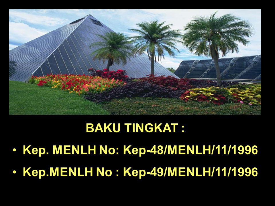 Staf Pusat Penelitian Lingkungan Hidup Universitas Diponegoro Amin Nugroho DAMPAK BISING DAN GETARAN