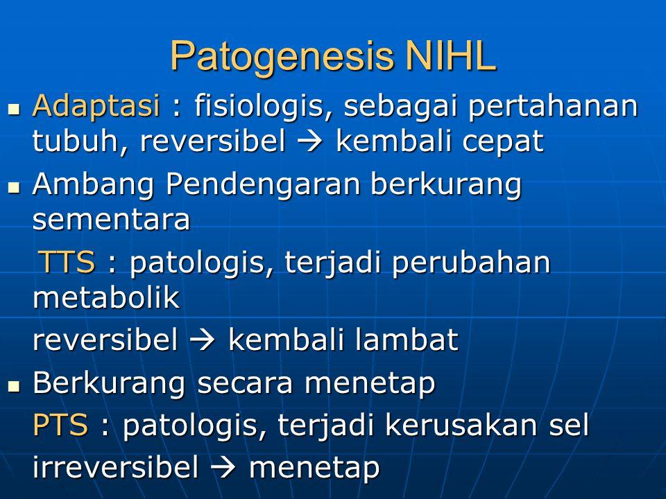 Patogenesis NIHL Adaptasi : fisiologis, sebagai pertahanan tubuh, reversibel  kembali cepat Adaptasi : fisiologis, sebagai pertahanan tubuh, reversib