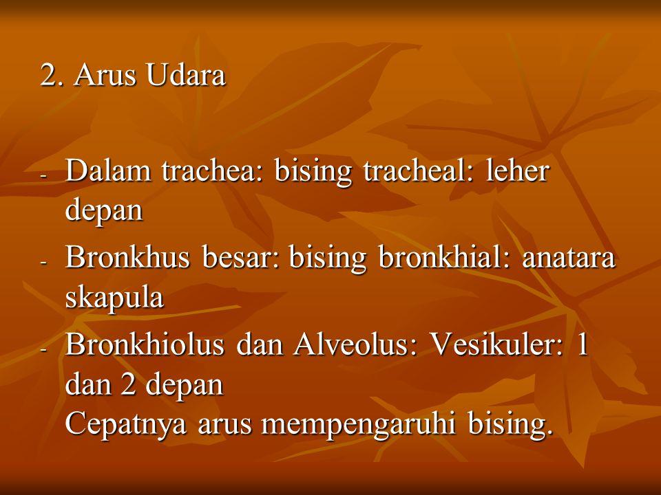 2. Arus Udara - Dalam trachea: bising tracheal: leher depan - Bronkhus besar: bising bronkhial: anatara skapula - Bronkhiolus dan Alveolus: Vesikuler: