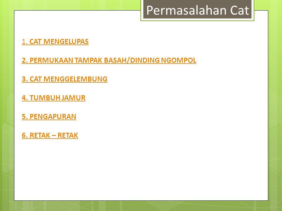Permasalahan Cat 1. CAT MENGELUPAS 2. PERMUKAAN TAMPAK BASAH/DINDING NGOMPOL 3. CAT MENGGELEMBUNG 4. TUMBUH JAMUR 5. PENGAPURAN 6. RETAK – RETAK