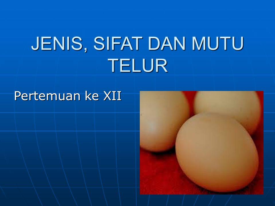 KOMPONEN POKOK: 1.Kulit telur : 11% 2. Putih telur: 58% 3.