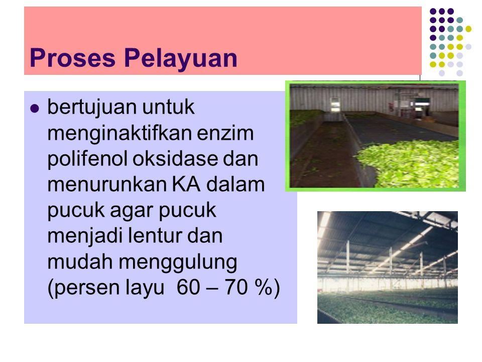 Proses Pelayuan bertujuan untuk menginaktifkan enzim polifenol oksidase dan menurunkan KA dalam pucuk agar pucuk menjadi lentur dan mudah menggulung (persen layu 60 – 70 %)