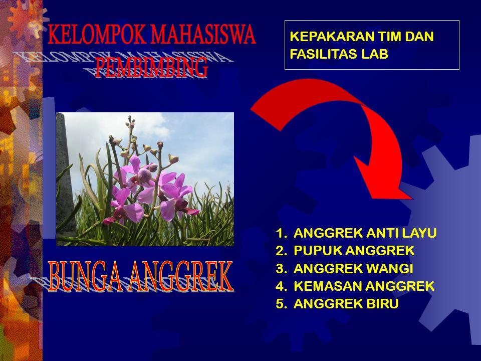 1.ANGGREK ANTI LAYU 2.PUPUK ANGGREK 3.ANGGREK WANGI 4.KEMASAN ANGGREK 5.ANGGREK BIRU KEPAKARAN TIM DAN FASILITAS LAB