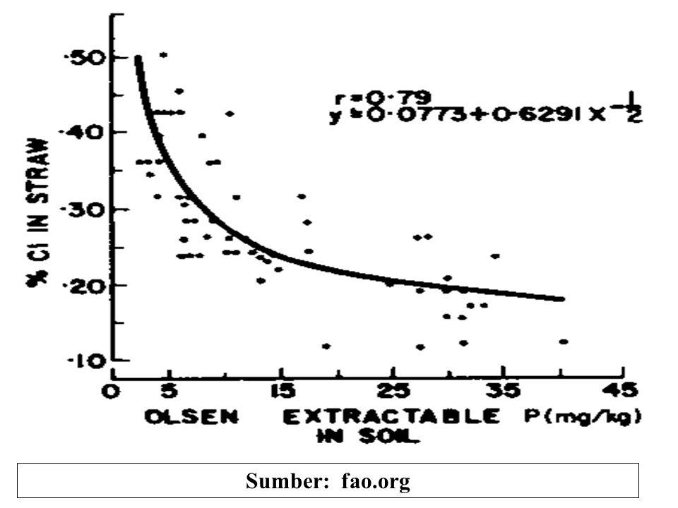 TanamanP-larutan tnh yg menghasilkan 95% hasil maks., ppm 1. Lettuce0.40 2. Tomat0.25 3. Cucumber0.20 4. Kedelai (vegetable)0.20 5. Ubijalar0.10 6. Ja