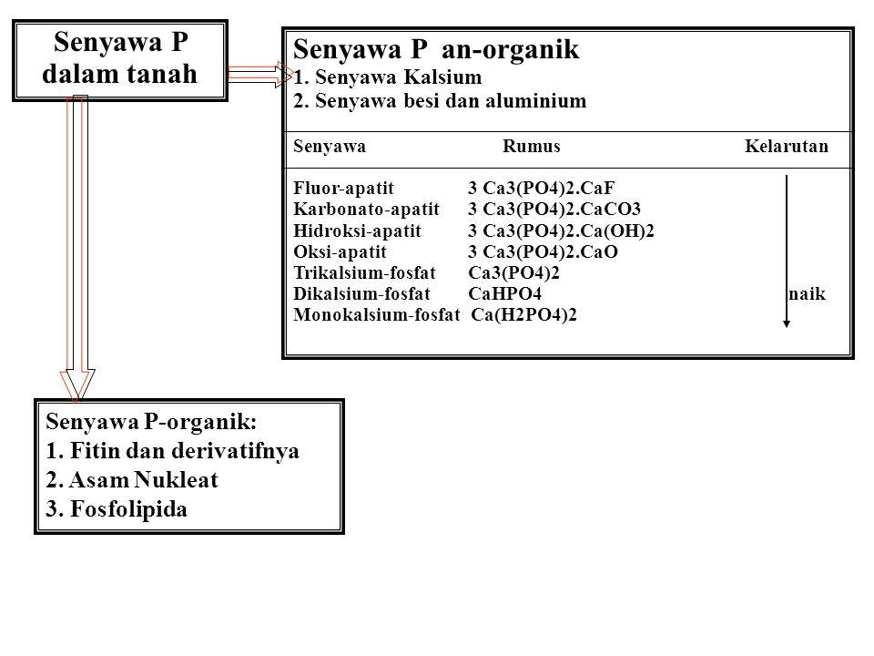 Senyawa P dalam tanah Senyawa P an-organik 1.Senyawa Kalsium 2.