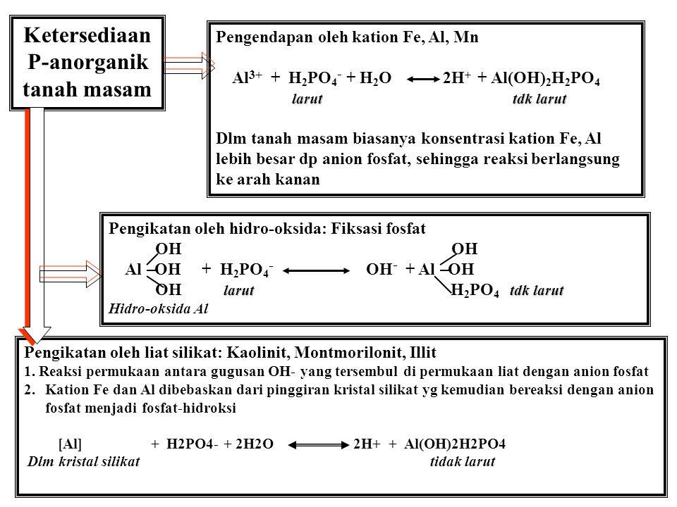 Tanah Liat dominan % Liat Fixed P (ppm) Adsorpsi Max.