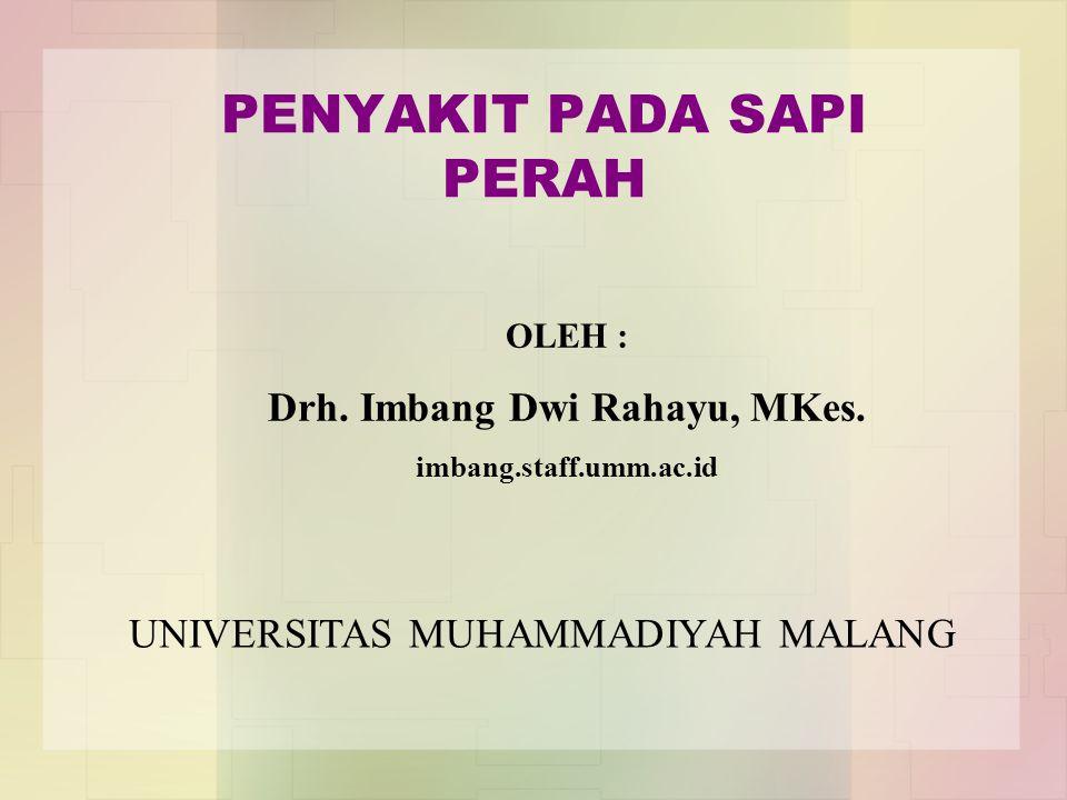 PENYAKIT PADA SAPI PERAH OLEH : Drh. Imbang Dwi Rahayu, MKes. imbang.staff.umm.ac.id UNIVERSITAS MUHAMMADIYAH MALANG