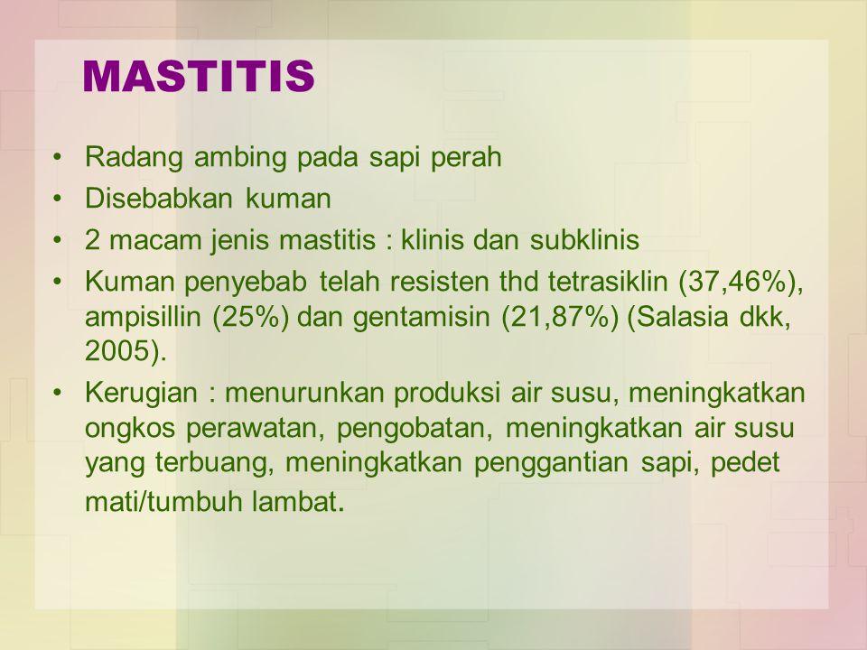 MASTITIS Radang ambing pada sapi perah Disebabkan kuman 2 macam jenis mastitis : klinis dan subklinis Kuman penyebab telah resisten thd tetrasiklin (3