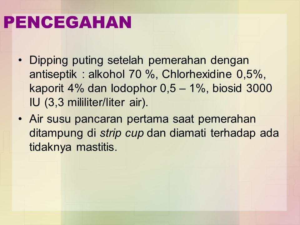 PENCEGAHAN Dipping puting setelah pemerahan dengan antiseptik : alkohol 70 %, Chlorhexidine 0,5%, kaporit 4% dan Iodophor 0,5 – 1%, biosid 3000 IU (3,