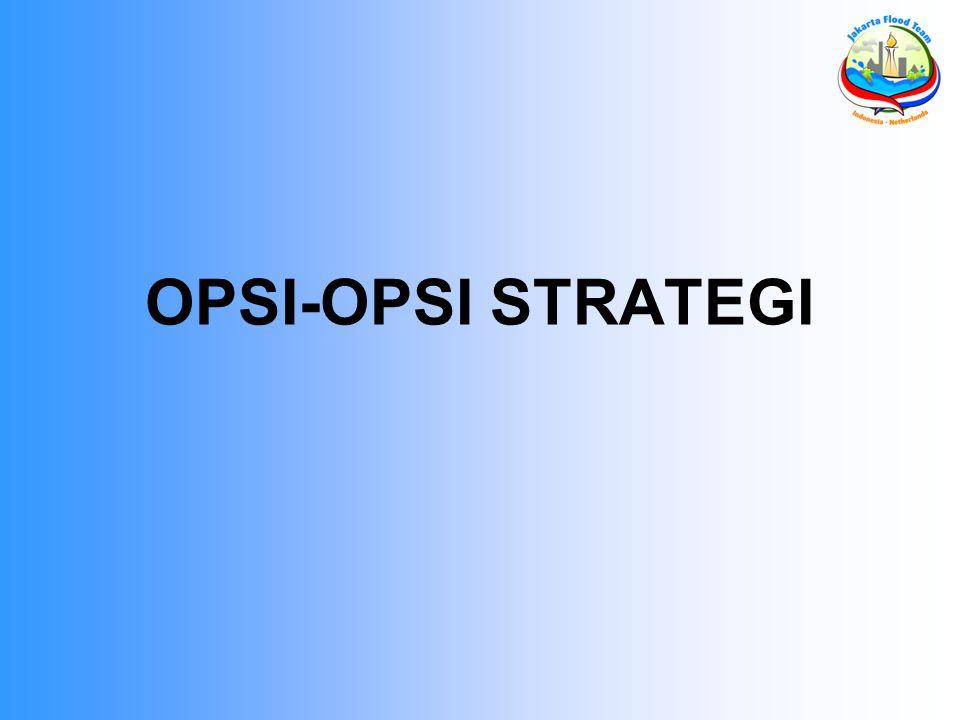 OPSI-OPSI STRATEGI