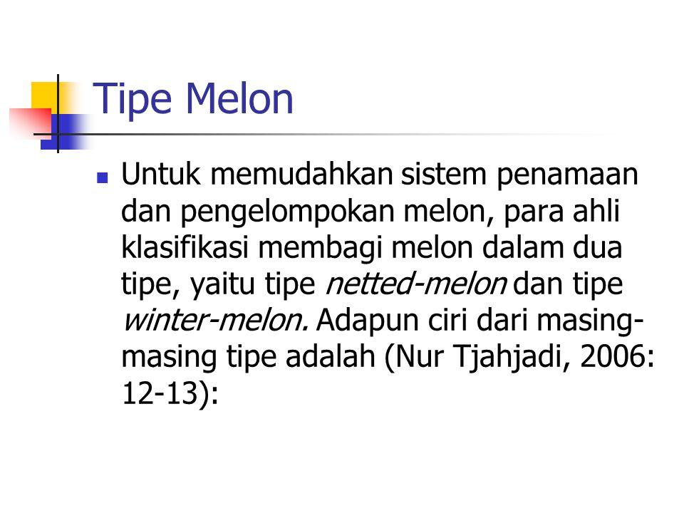 Tipe Melon Untuk memudahkan sistem penamaan dan pengelompokan melon, para ahli klasifikasi membagi melon dalam dua tipe, yaitu tipe netted-melon dan t