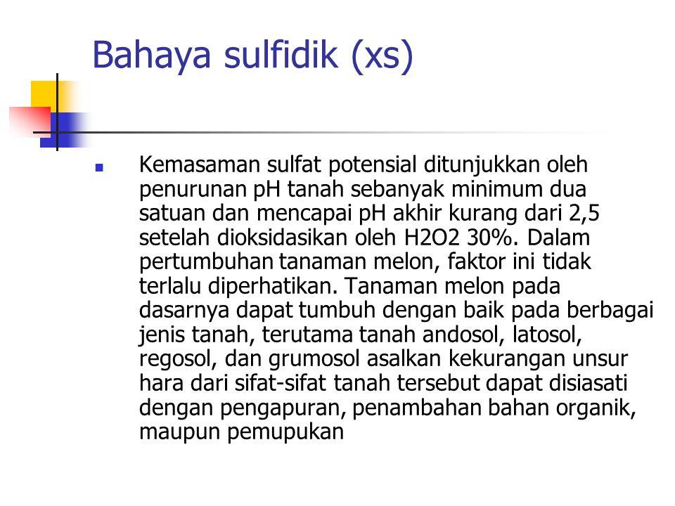 Bahaya sulfidik (xs) Kemasaman sulfat potensial ditunjukkan oleh penurunan pH tanah sebanyak minimum dua satuan dan mencapai pH akhir kurang dari 2,5 setelah dioksidasikan oleh H2O2 30%.