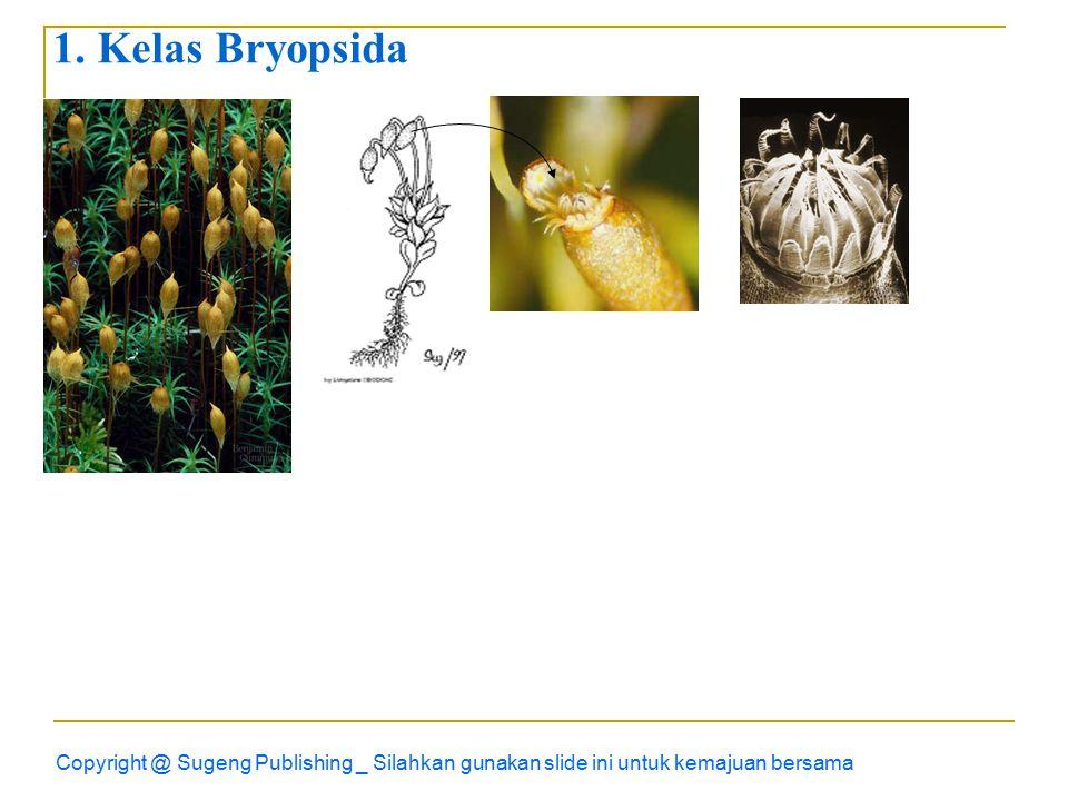 Copyright @ Sugeng Publishing _ Silahkan gunakan slide ini untuk kemajuan bersama 1.