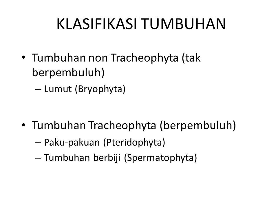 KLASIFIKASI TUMBUHAN Tumbuhan non Tracheophyta (tak berpembuluh) – Lumut (Bryophyta) Tumbuhan Tracheophyta (berpembuluh) – Paku-pakuan (Pteridophyta) – Tumbuhan berbiji (Spermatophyta)