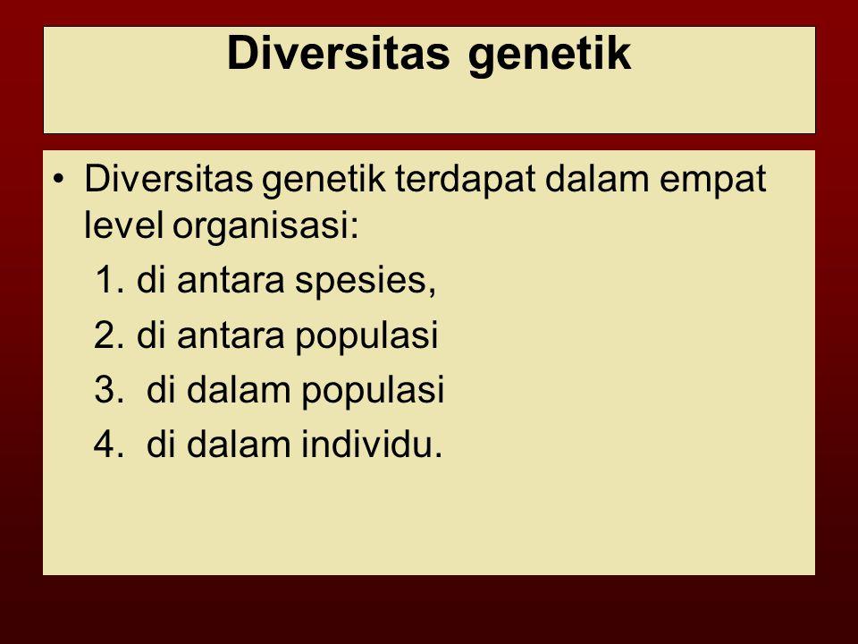 Diversitas genetik Diversitas genetik terdapat dalam empat level organisasi: 1.