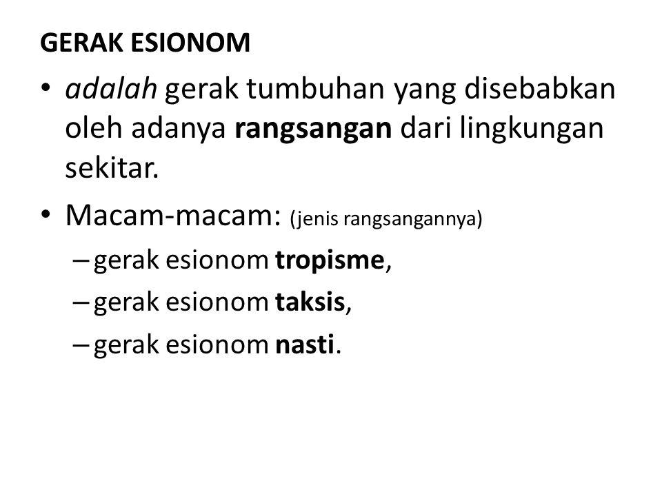 GERAK ESIONOM adalah gerak tumbuhan yang disebabkan oleh adanya rangsangan dari lingkungan sekitar. Macam-macam: (jenis rangsangannya) – gerak esionom