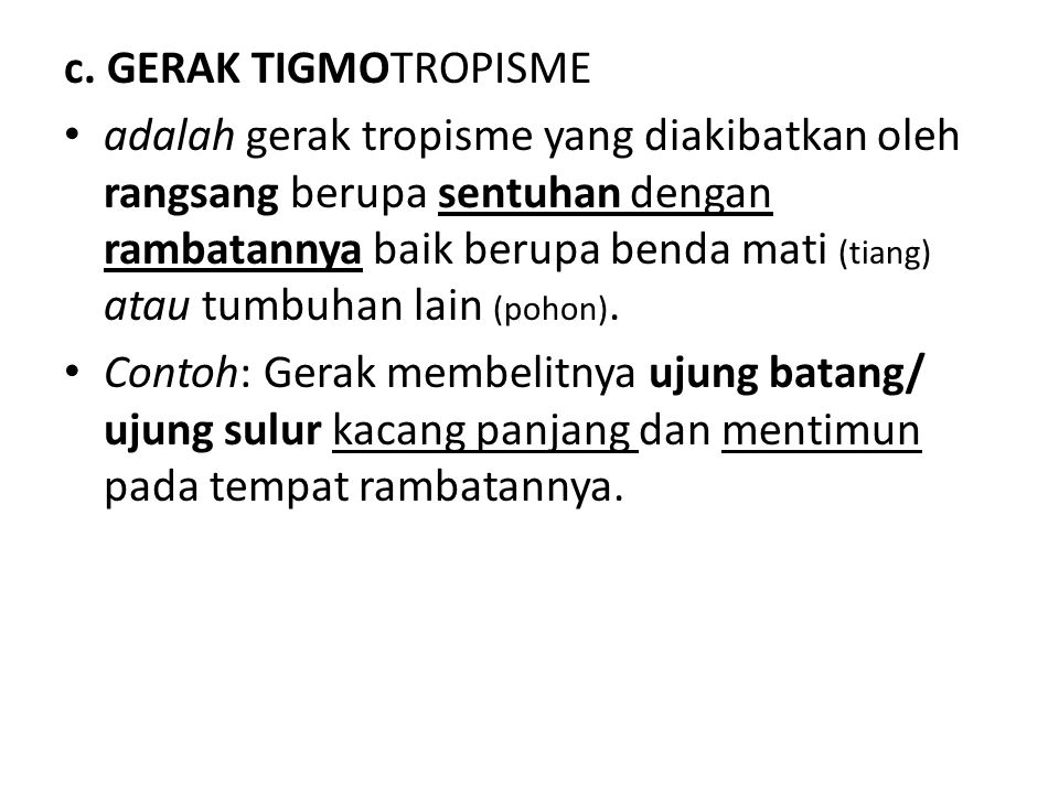 c. GERAK TIGMOTROPISME adalah gerak tropisme yang diakibatkan oleh rangsang berupa sentuhan dengan rambatannya baik berupa benda mati (tiang) atau tum