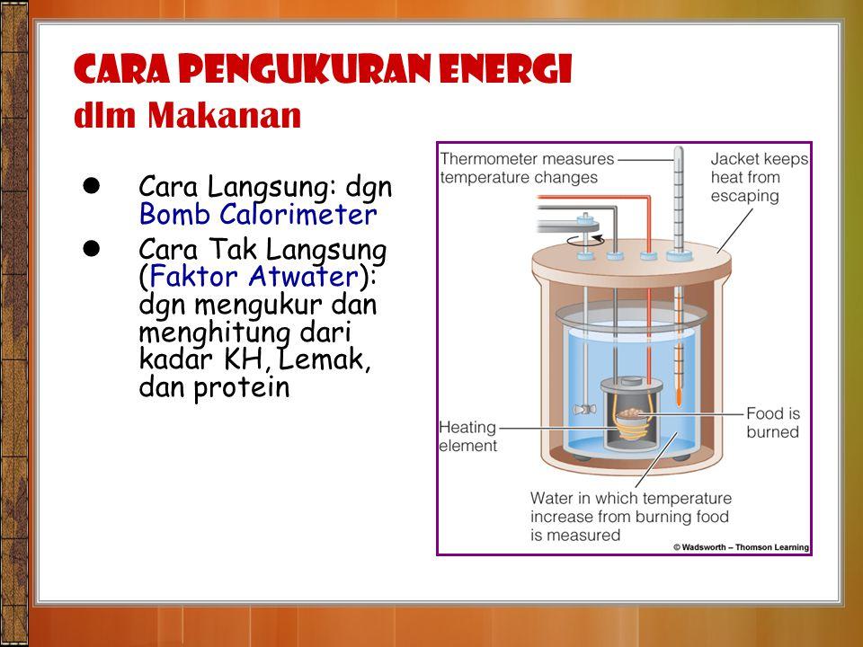 Cara Langsung: dgn Bomb Calorimeter Cara Tak Langsung (Faktor Atwater): dgn mengukur dan menghitung dari kadar KH, Lemak, dan protein CARA PENGUKURAN