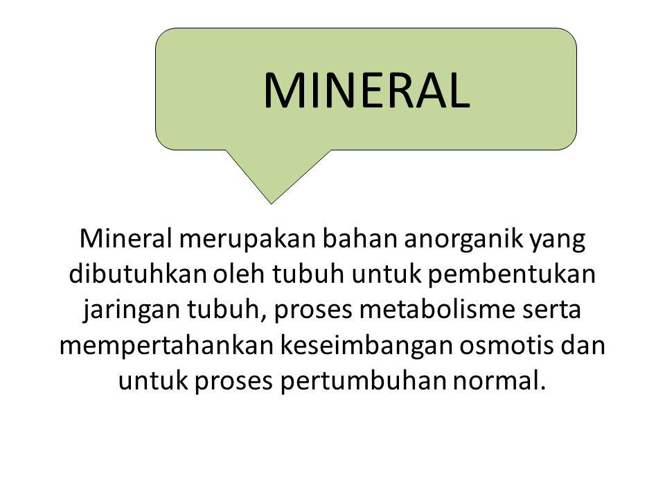 Peranan Mineral: menyusun struktur rangka, transfer elektron, regulasi keseimbangan asam basa dan osmoregulasi.