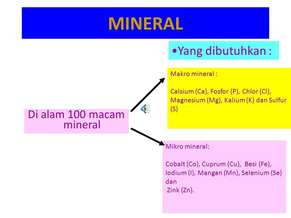 MINERAL Di alam 100 macam mineral Yang dibutuhkan : Makro mineral : Calsium (Ca), Fosfor (P), Chlor (Cl), Magnesium (Mg), Kalium (K) dan Sulfur (S) Mikro mineral: Cobalt (Co), Cuprum (Cu), Besi (Fe), Iodium (I), Mangan (Mn), Selenium (Se) dan Zink (Zn).