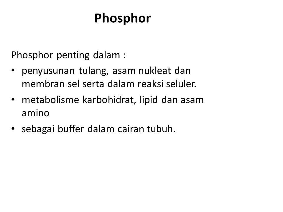 Phosphor Phosphor penting dalam : penyusunan tulang, asam nukleat dan membran sel serta dalam reaksi seluler.