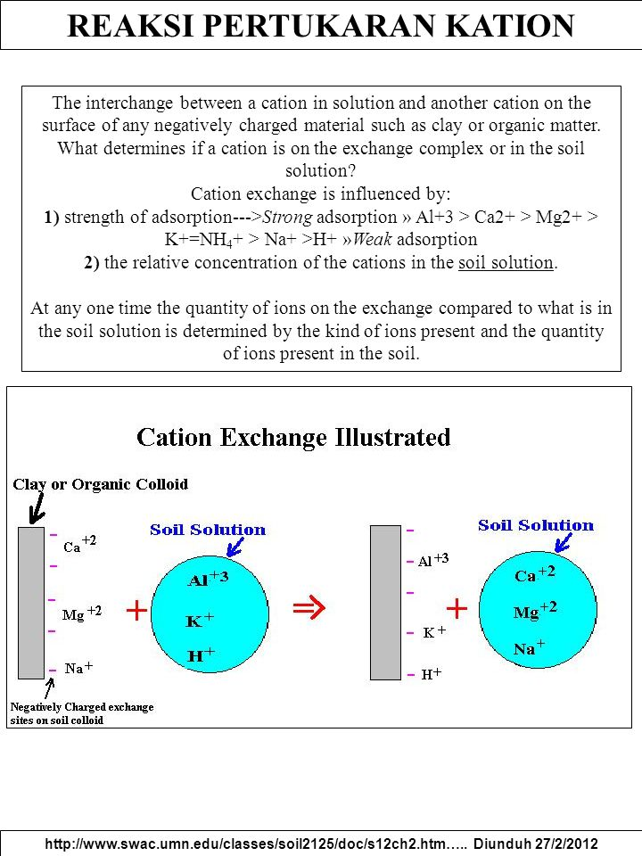 REAKSI PERTUKARAN KATION http://www.swac.umn.edu/classes/soil2125/doc/s12ch2.htm….. Diunduh 27/2/2012 The interchange between a cation in solution and