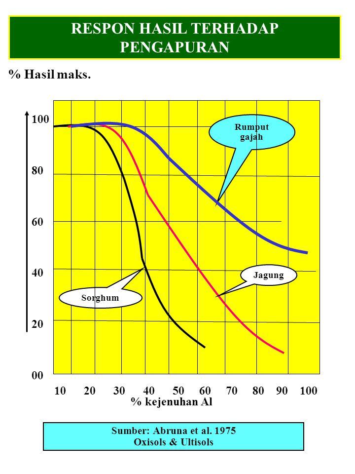 1.Kapur biasanya dibenamkan sedalam 15 cm beberapa hari sebelum tanam.