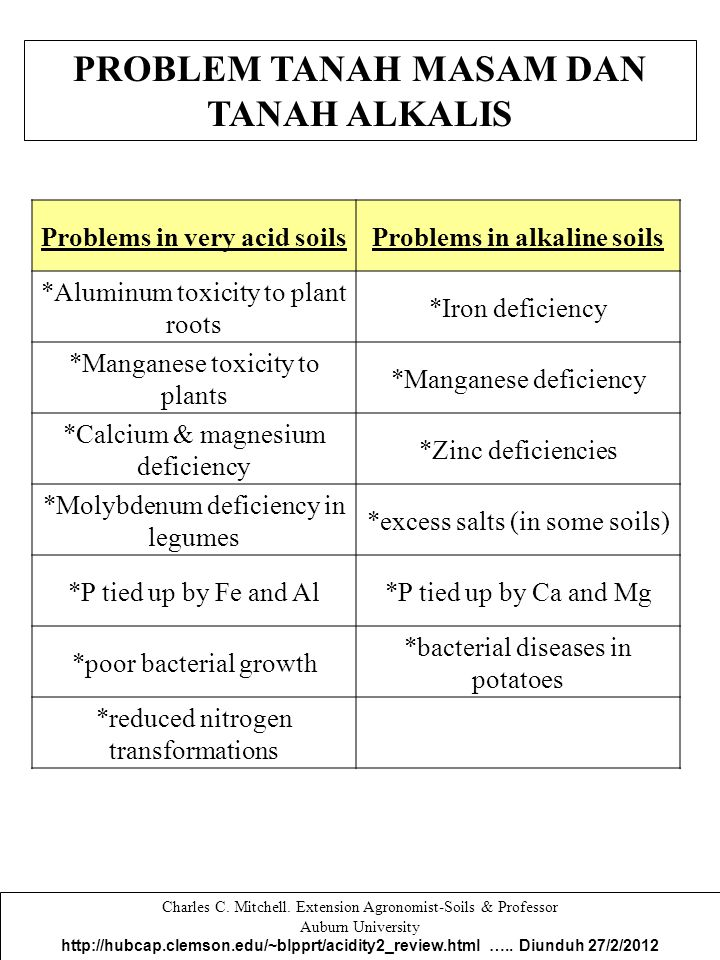 PROBLEM TANAH MASAM DAN TANAH ALKALIS Problems in very acid soilsProblems in alkaline soils *Aluminum toxicity to plant roots *Iron deficiency *Mangan