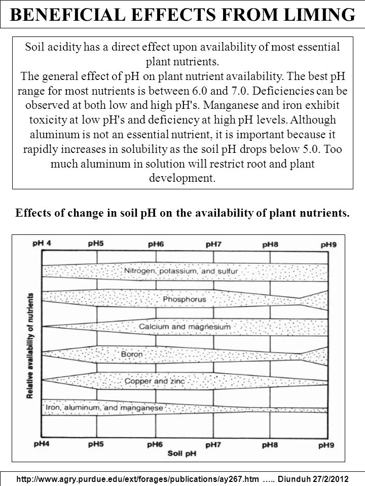 BENEFICIAL EFFECTS FROM LIMING http://www.agry.purdue.edu/ext/forages/publications/ay267.htm ….. Diunduh 27/2/2012 Soil acidity has a direct effect up