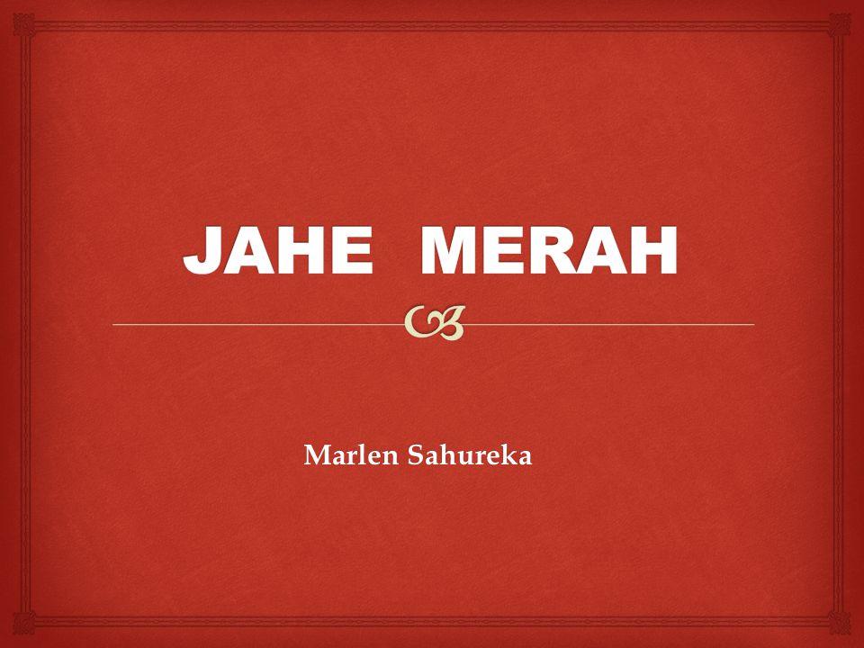 Marlen Sahureka