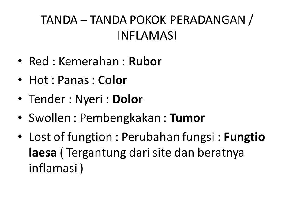 TANDA – TANDA POKOK PERADANGAN / INFLAMASI Red : Kemerahan : Rubor Hot : Panas : Color Tender : Nyeri : Dolor Swollen : Pembengkakan : Tumor Lost of f