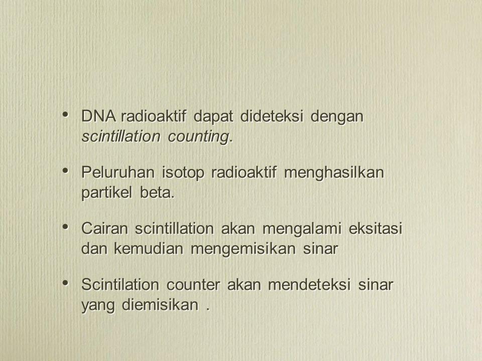 DNA radioaktif dapat dideteksi dengan scintillation counting. Peluruhan isotop radioaktif menghasilkan partikel beta. Cairan scintillation akan mengal